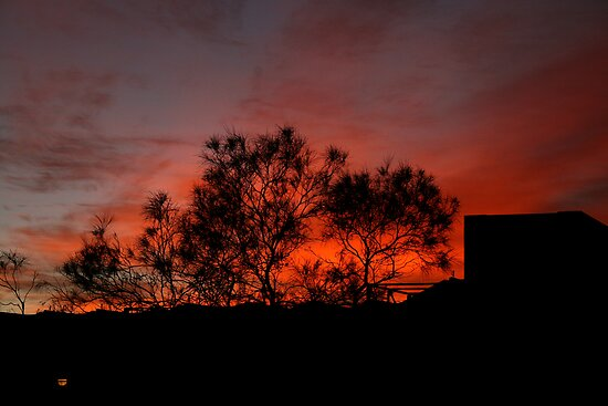 Vermillion sunrise by Robyn Lakeman