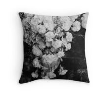 Sentaire Throw Pillow