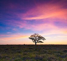 Outback Sunset by McguiganVisuals