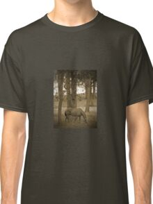 Horse Grazing Among The Autumn Trees Sepia Classic T-Shirt