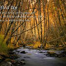 Be Lifted Up by Charles & Patricia   Harkins ~ Picture Oregon