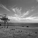 Mercury Passage, Maria Island by John  Cuthbertson | www.johncuthbertson.com