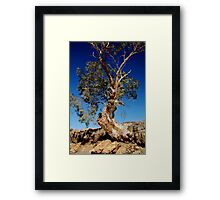 Channel Country,Outback Queensland. Framed Print