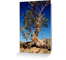 Channel Country,Outback Queensland. Greeting Card
