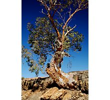 Channel Country,Outback Queensland. Photographic Print