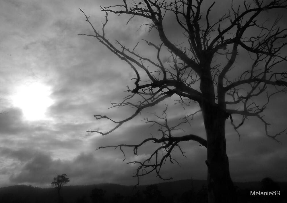 Tree by Melanie89