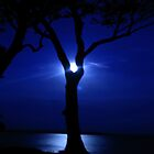 Pearl Light by Elias