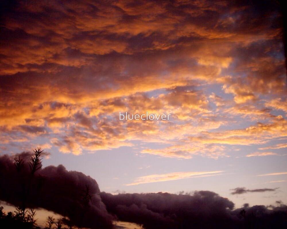 Orange Sunset by blueclover
