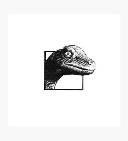 Alamosaurus Photographic Print