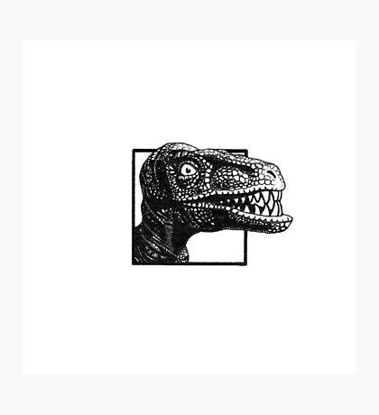 Crazed Raptor Photographic Print