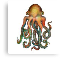 Octopus or Squid? It's a Cephalopod! Canvas Print