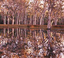 Sheet Water - Grampians - Victoria by James Pierce