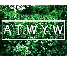 ATWYW - Trees Photographic Print