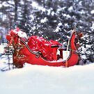 Omega Red Sleigh... by Poete100