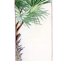 Tree by Mariana Musa