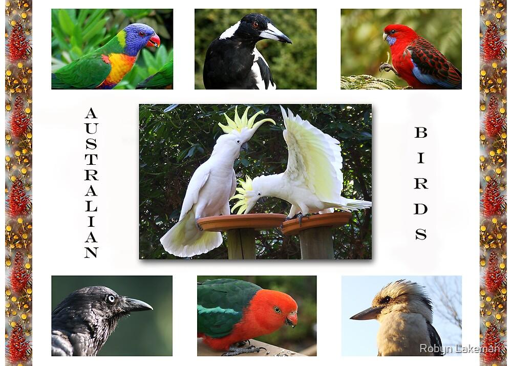 Birds in my garden by Robyn Lakeman