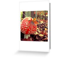 Softly Fell Greeting Card