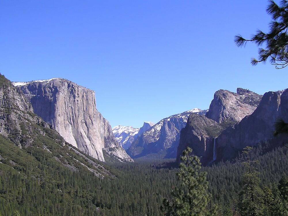Yosemite Blue Sky II by J K Scott