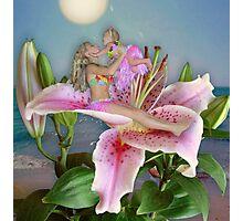 Aloha Photographic Print