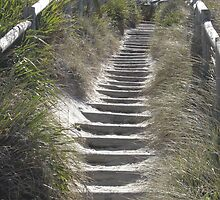 steps by vwarfield