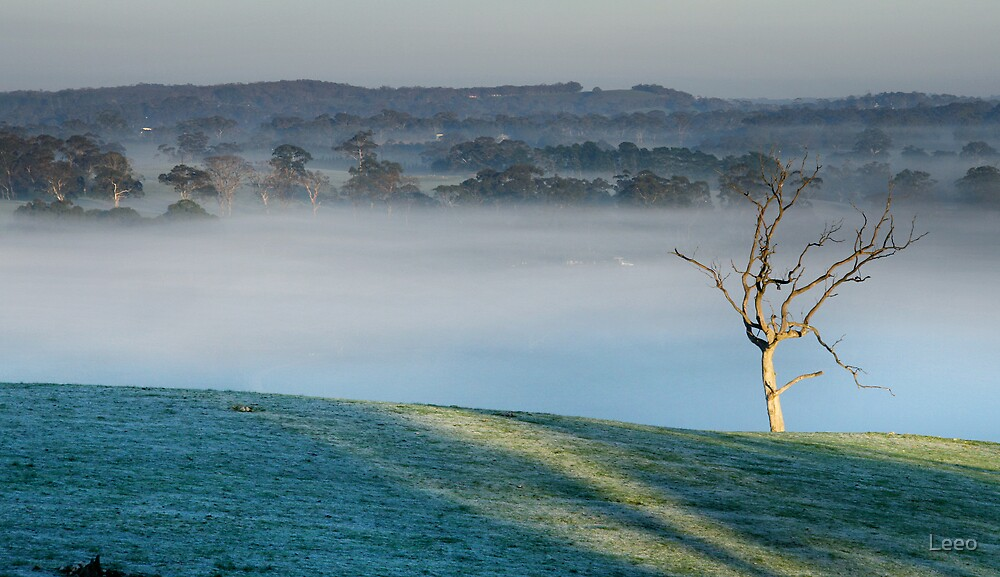 First Light - Nairne - Adelaide Hills by Leeo