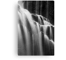 McKensie Falls 1 Canvas Print