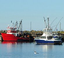 Ulladulla Harbour by Lynn