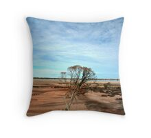 In Search of Water Throw Pillow