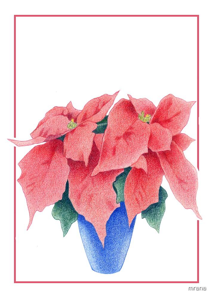 Poinsettia 2 by Mariana Musa