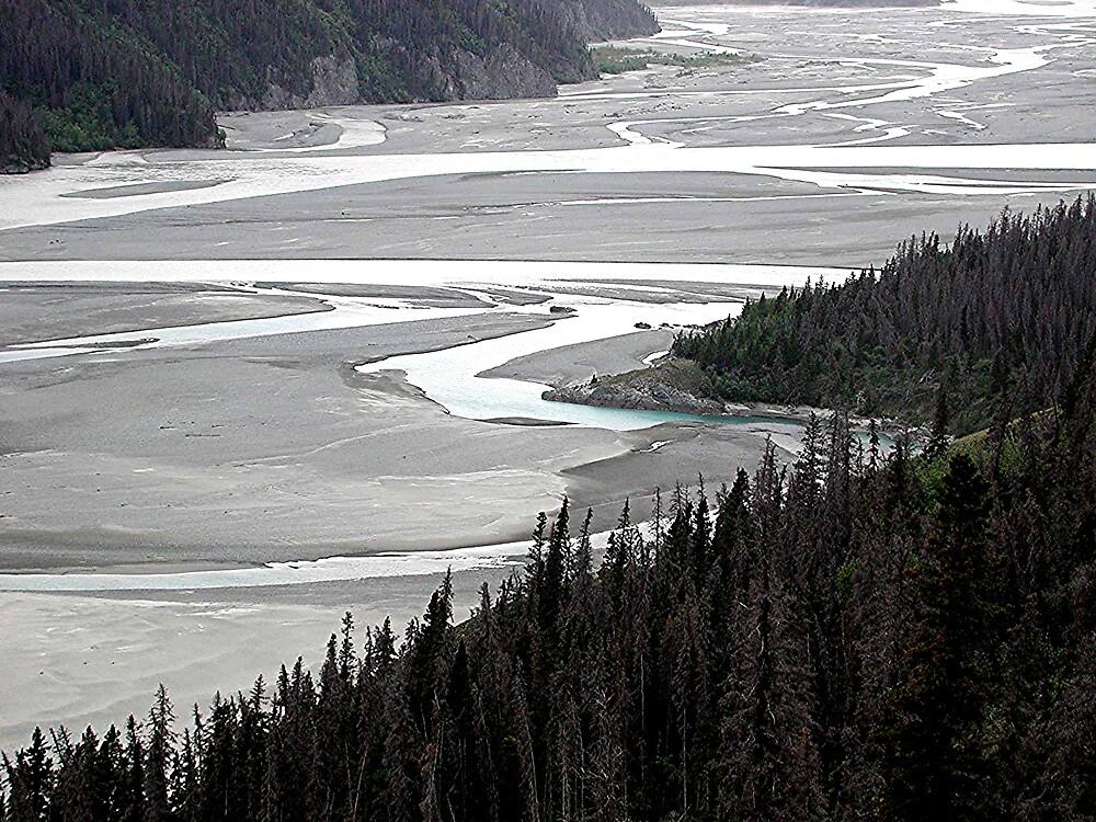 Copper River, Alaska by SunnyDay