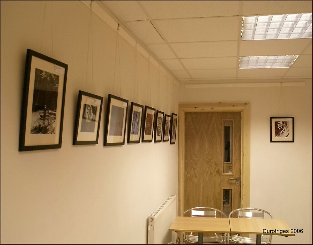 My First Exhibition by Durotriges