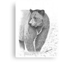 Shavarsh - Black Bear Canvas Print