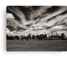 Local Cricket Canvas Print