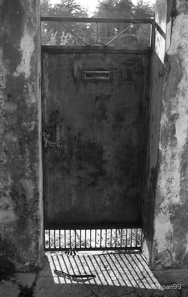 old door by estepan99