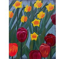 Tulips & daffodils Photographic Print