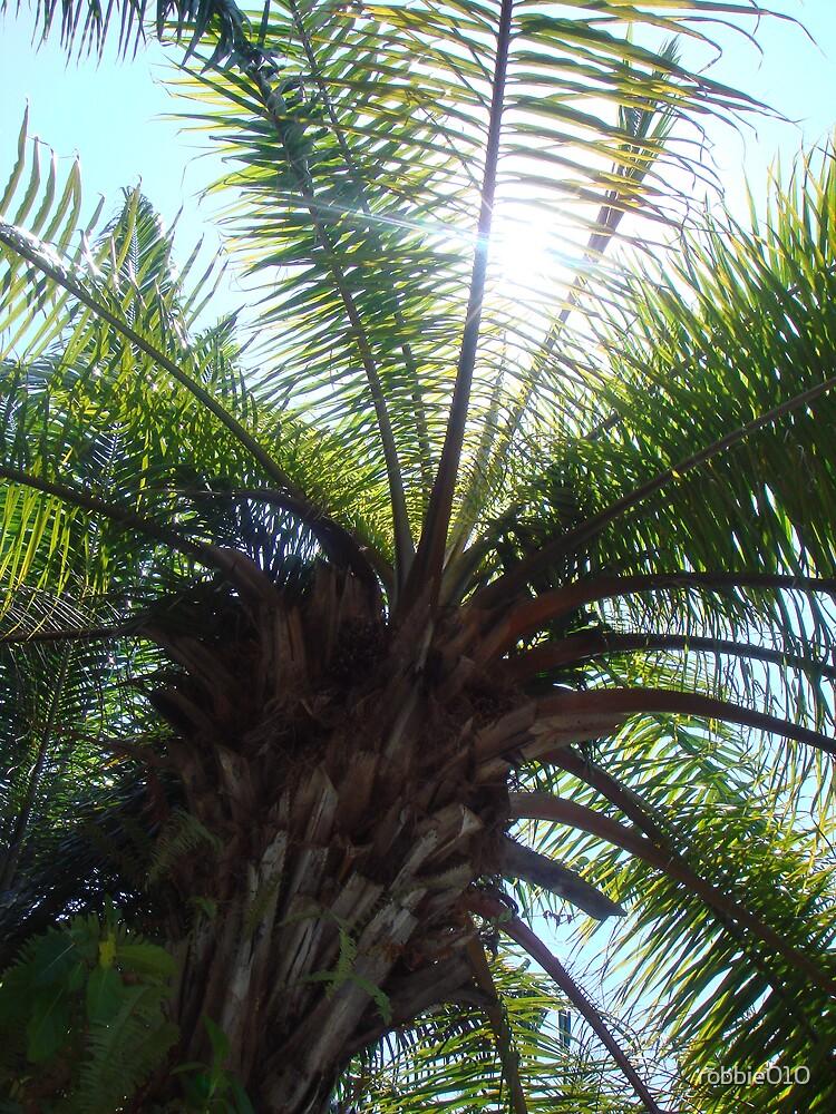 Bali Palm I by robbie010