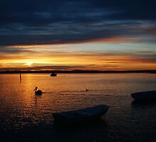 Swan Bay Sunset, Queenscliff by Joe Mortelliti
