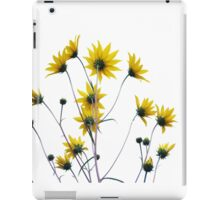 Butterflies Wanted iPad Case/Skin