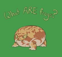 What ARE Frogs? (Desert Rain edition) Kids Clothes