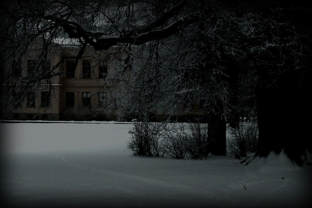 On a dark path.. by ElinaM