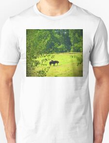 Trio of Horses in a Field Unisex T-Shirt