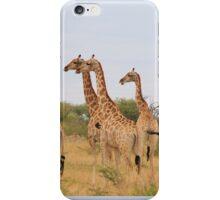 Giraffe Humor - African Wildlife - Amazing Stare iPhone Case/Skin