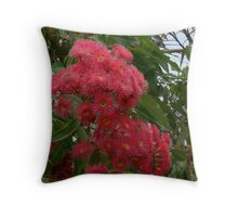 Red flowering gum from Australia Throw Pillow