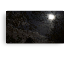 Mystery Moon Canvas Print