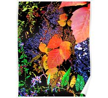 Vibrant and Colorful Leaf and Nature Design Poster