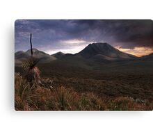 Moody Morning  Canvas Print