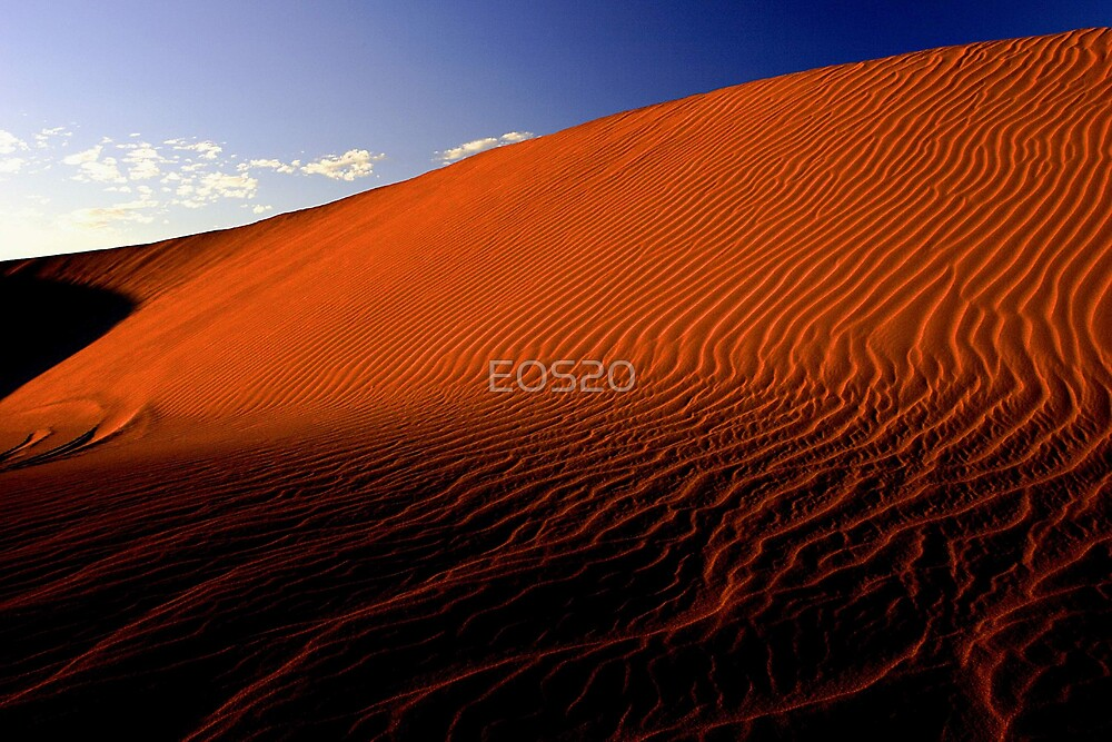 Desert Sand Dune  by EOS20