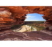 Peaking Through Natures Window  Photographic Print