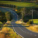 Road by farmboy