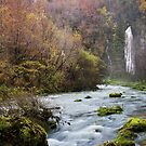 Autumn along Flumen river by Patrick Morand